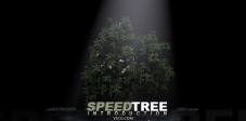 Cmivfx_SpeedTree入门教学(SpeedTree Introduction)